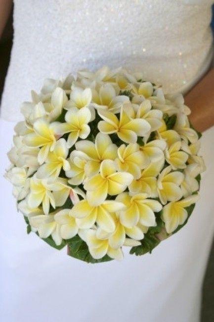 Bouquet Sposa Fiori Darancio.Bouquet Con Fiori Di Arancio Organizzazione Matrimonio Forum