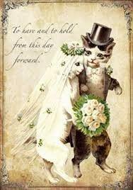 Wedding Cats!!! 1