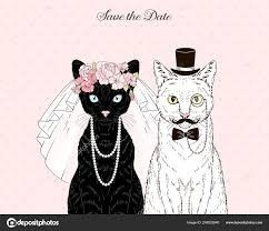 Wedding Cats!!! 3