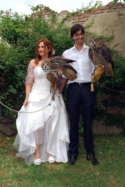 sposi e civette
