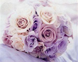 Matrimonio In Glicine : Matrimonio in glicine cerimonia nuziale forum matrimonio