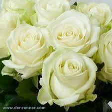 Fiori, fiori, fiori!!! - 1