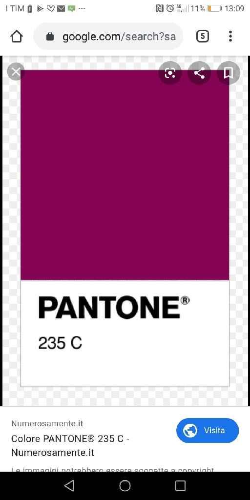 Color vinaccia - 1
