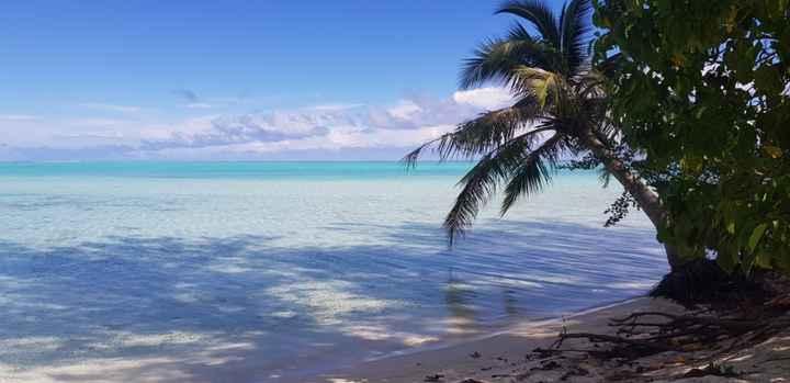 Polinesia francese - 1