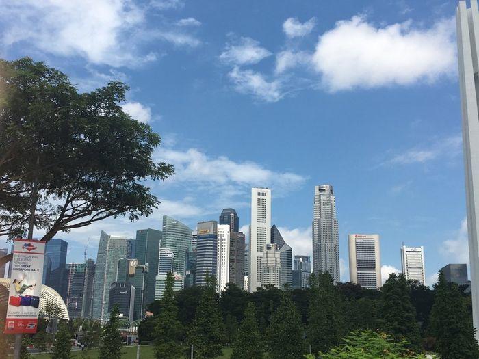 Chi ha visto la malesia e singapore? - 5