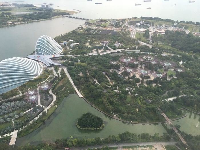 Chi ha visto la malesia e singapore? - 11
