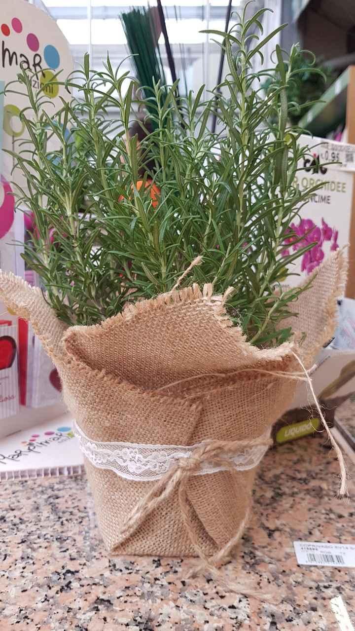 Vaso porta erbe aromatiche