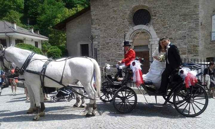 Cavallo e carrozza di cenerentola - 3