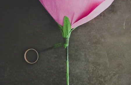 Calice fissato alla base del fiore