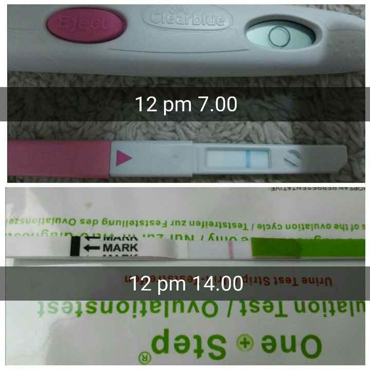 Clearblue vs canadesi: ovulation test - 1