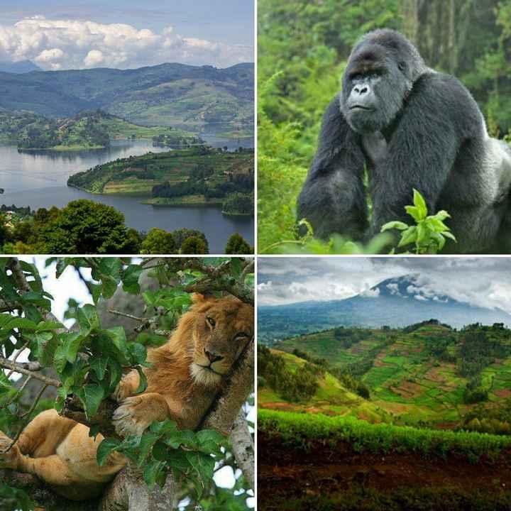 Uganda/Rwanda