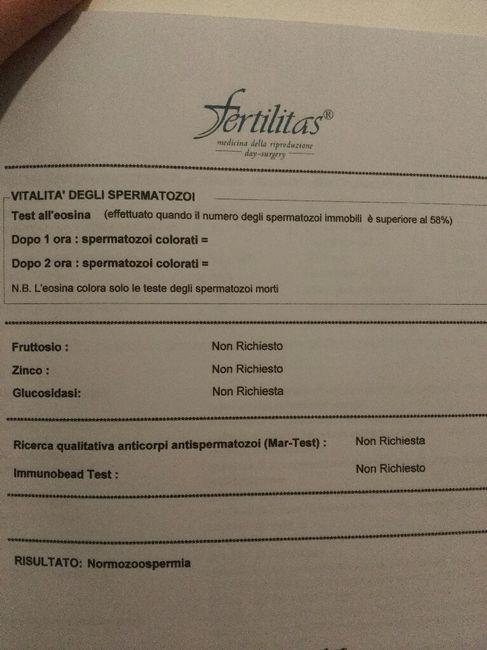 Spermiogramma...risultati - 3
