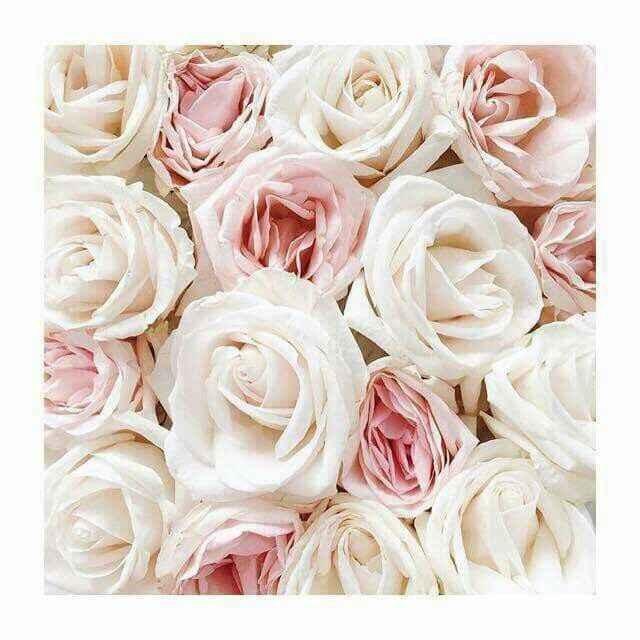 Quale bouquet scegliere tra questi? - 1