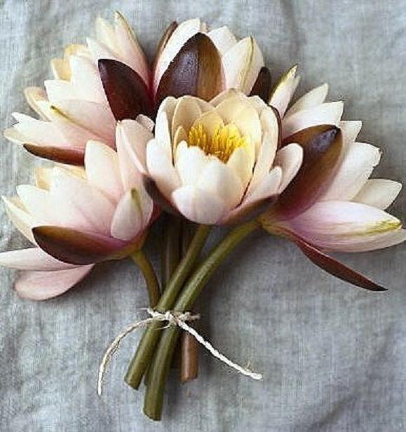 Popolare Bouquet fiori di loto allestimento con ninfee - Ricevimento di  YO63