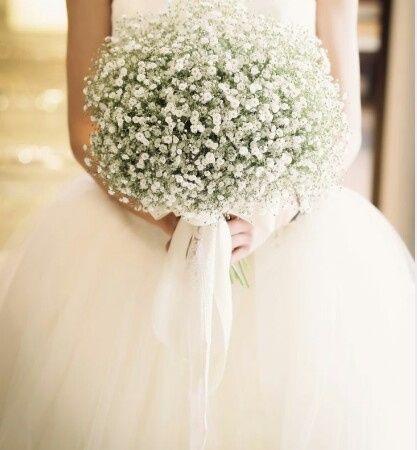Quanto Costa Il Bouquet Della Sposa.Gipsofila Prima Delle Nozze Forum Matrimonio Com