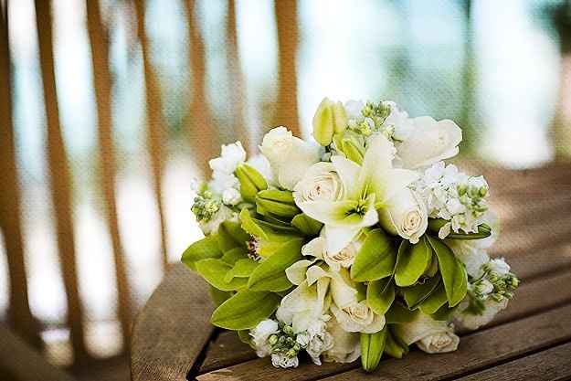 Fiori bianchi e verdi