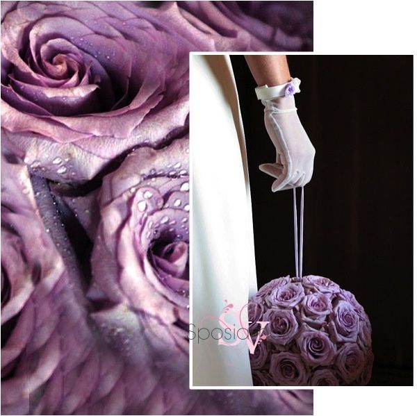 Matrimonio In Glicine : Matrimonio glicine foto