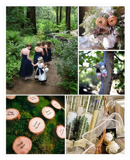 Matrimonio In Bosco : Matrimonio nel bosco foto fai da te