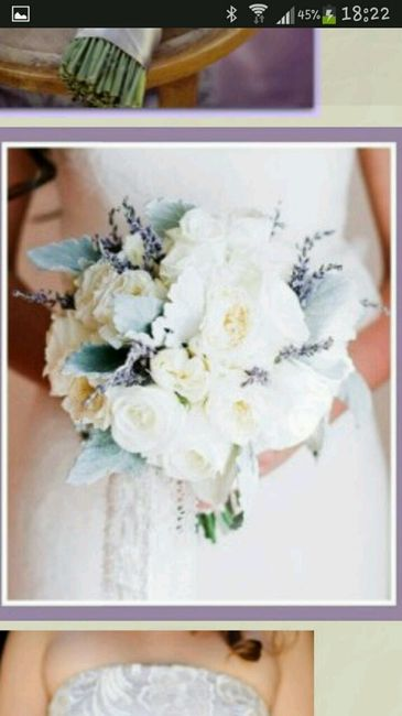 Matrimonio Tema Lavanda : Tema lavanda organizzazione matrimonio forum
