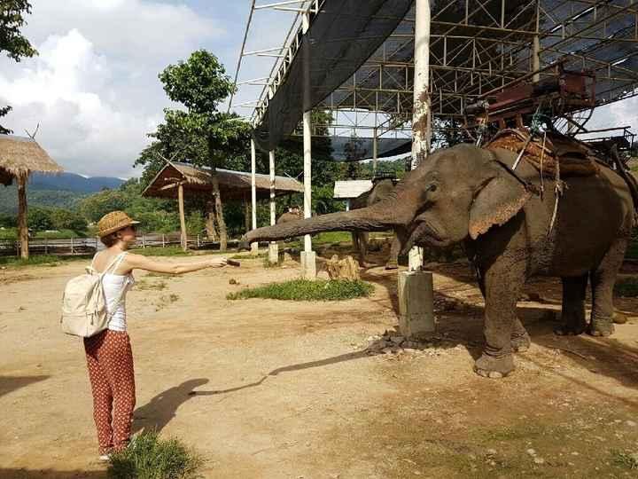 Thailandia nel cuore - 11