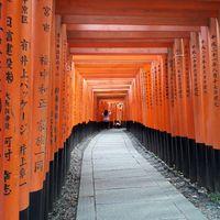Luna di miele: destinazione Giappone! - 6