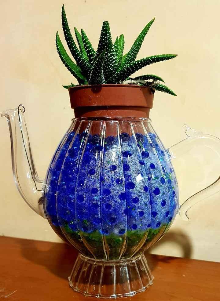 Bomboniere: vasetti piante grasse diy - 1