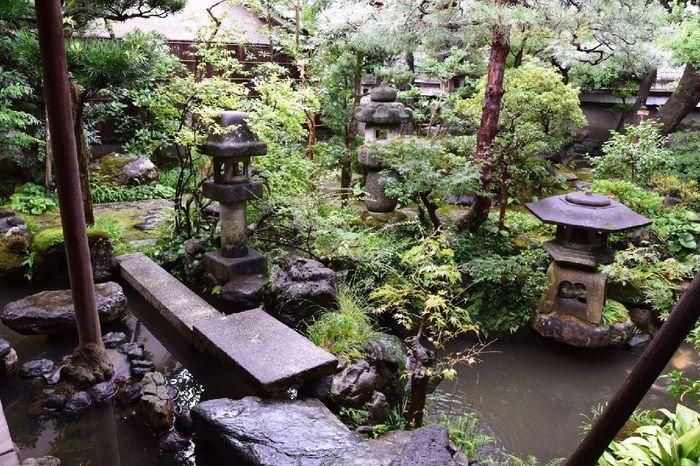 Giappone Tour Eden antico e moderno - 18 giugno 5