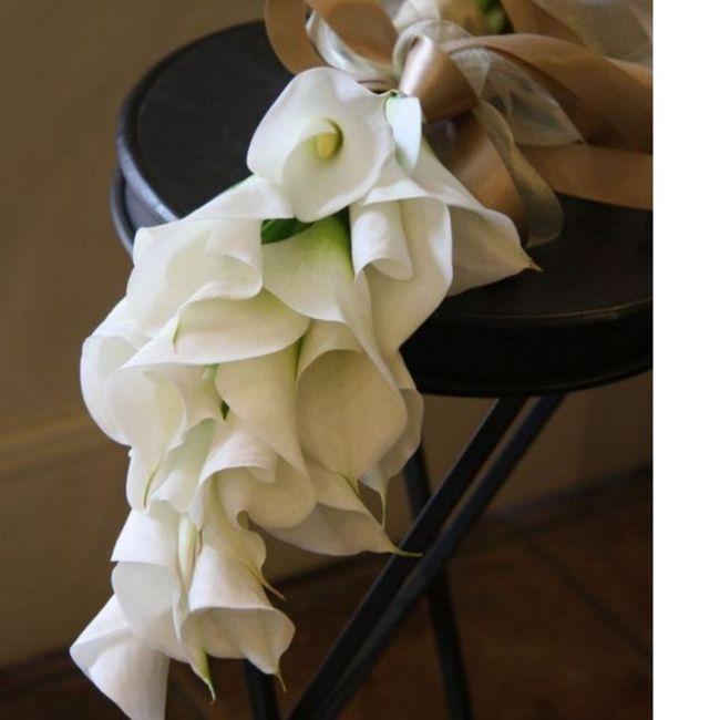 Il bouquet e le sue forme! 4