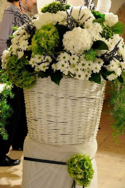 Fiori Ortensie Bianche : Nomi dei fiori che avete scelto página