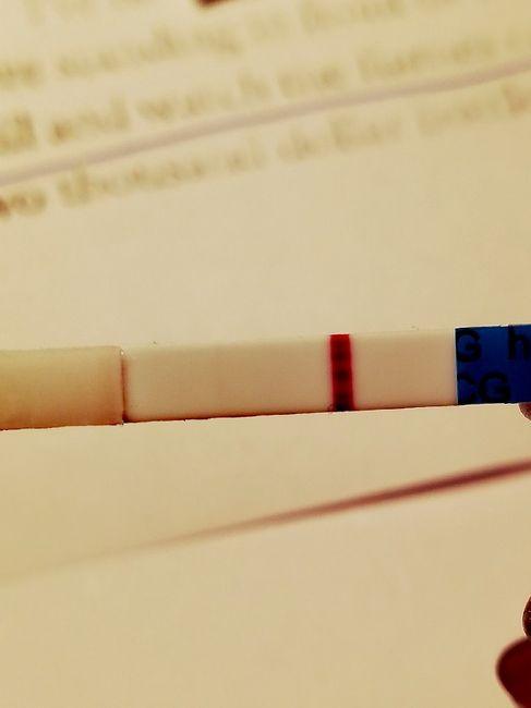 Test di gravidanza precoce 4