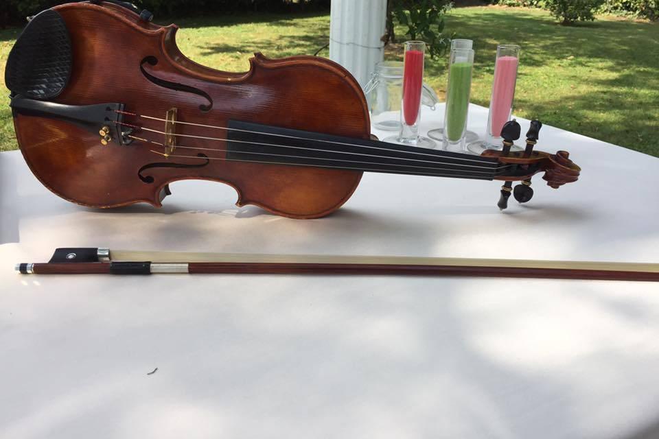 Violino cerimonia civile