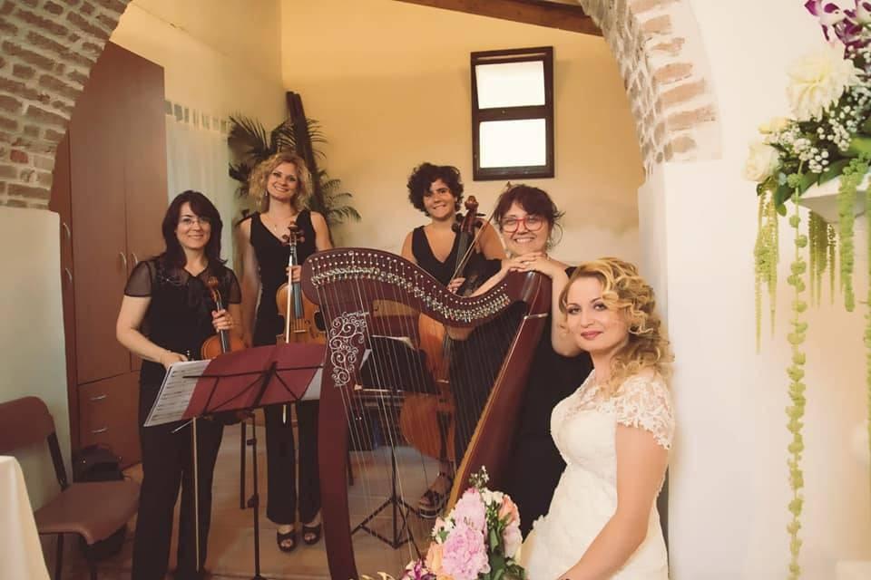 Le Muse d'Argento Professione Musica