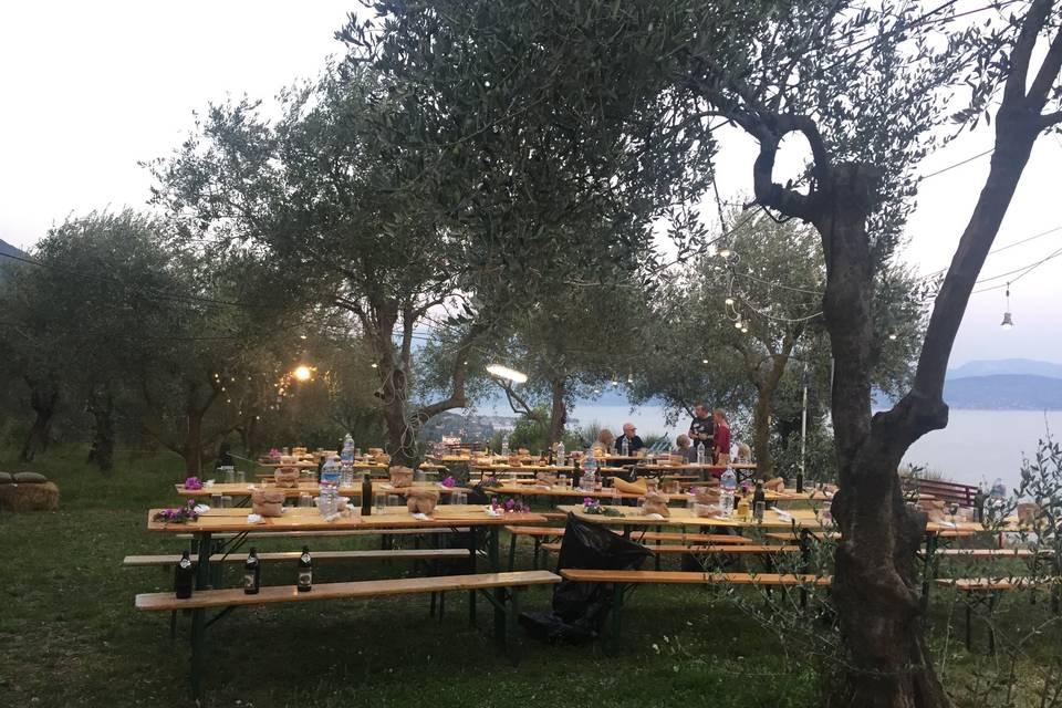 Azieda agricola Conte Brunello