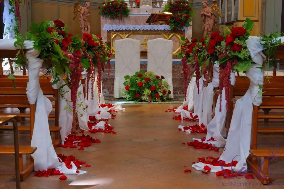 Viola fiori matrimoni eventi