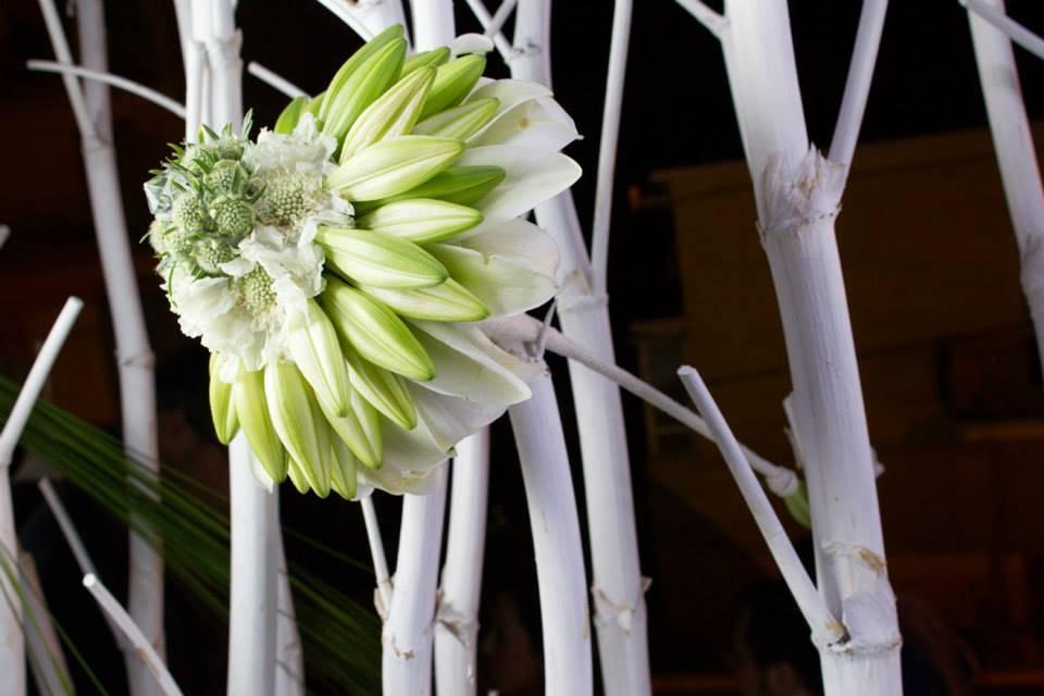 Cinzia Floral Designer