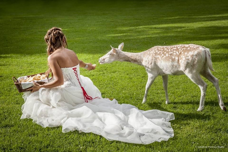 Sposa e cerbiatto