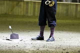 Trakel clown arena cavalli