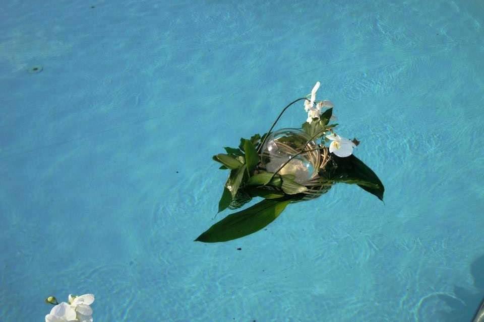 Particolare in piscina