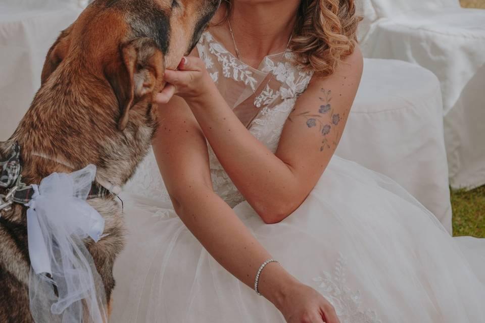 Canaglie da Matrimonio - Le tue Wedding Dog Sisters!