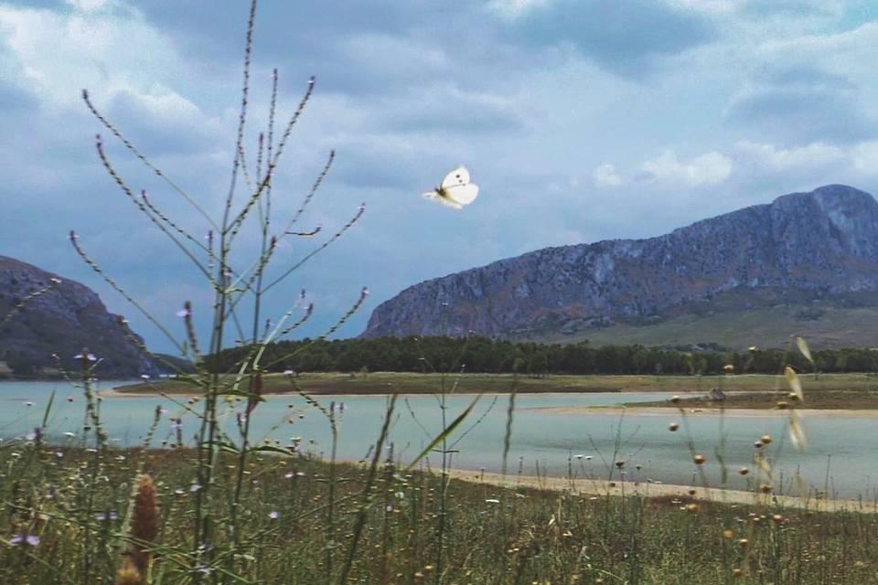 Immagine estratta dal film