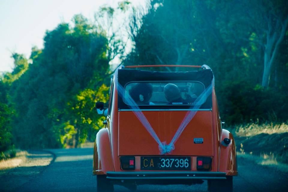 Pau 1979