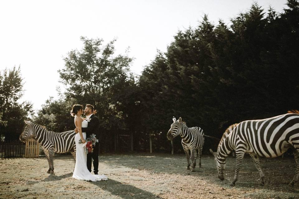 Franco Bastoni Wedding Stories