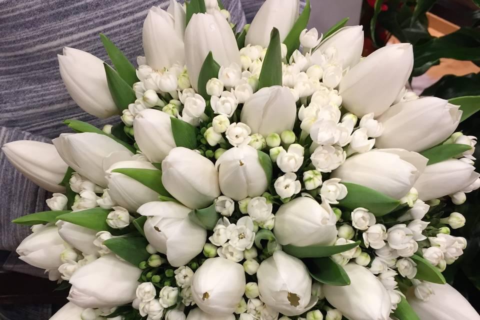 Bouquet tulipanini e bovardia