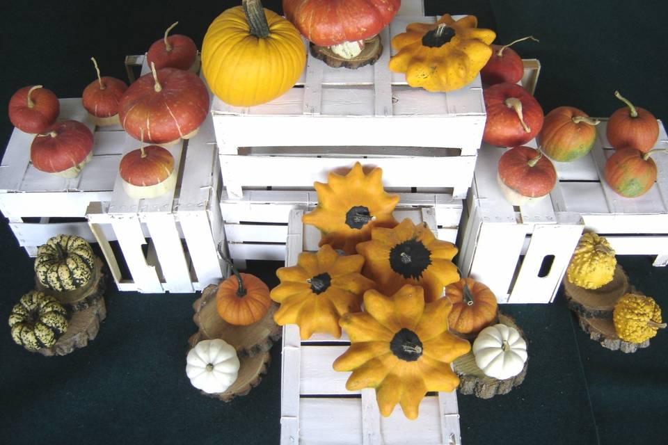 Degano Zucche Ornamentali