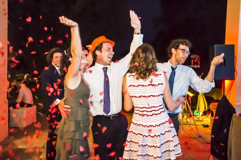 Party Wedding Dj