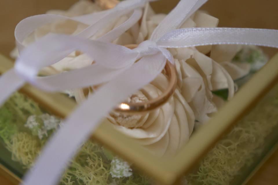 Daniela Colasanto Wedding Plan