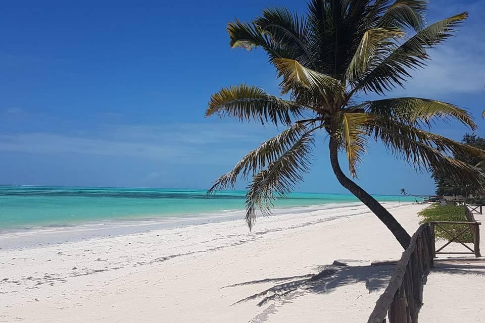 Zanzibar melissa e michele