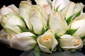 L'arte dei Fiori - Flower e Event