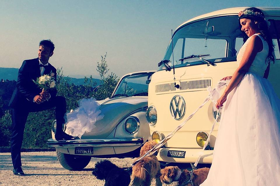Pet Sitter for Wedding