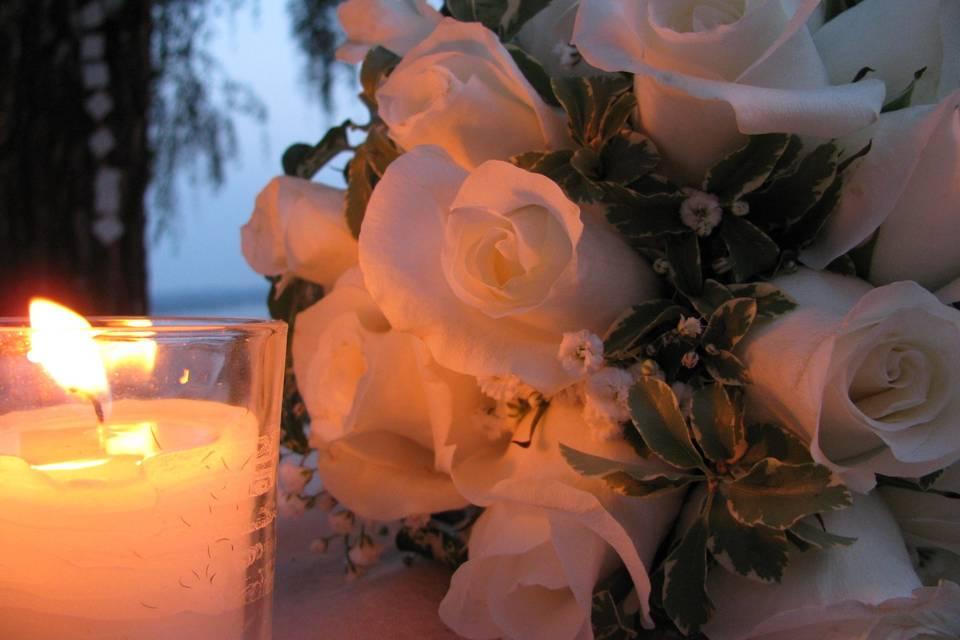 Antonella Non solo fiori